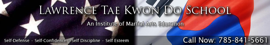 an introduction to the art of tae kwon do University of technology sydney taekwondo club  wanting to maximise the  uni experience learning a martial art improving physical fitness, increased  flexibility and tone  chungdokwan association sparring introduction seminar.